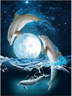 Picture dolphins 3d 4d 5d moon swimming sea
