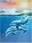 Picture 3d 4d 5d sea ocean dolphin fish swimming sunset waves