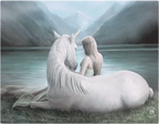 unicorn lady lake canvas fantasy white mythical