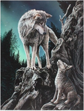 wolves pup fantasy canvas guidance
