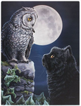 Owl and black cat moon