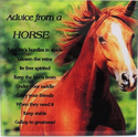 advice from a horse glass plaque